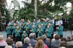 One of our Palm House performances